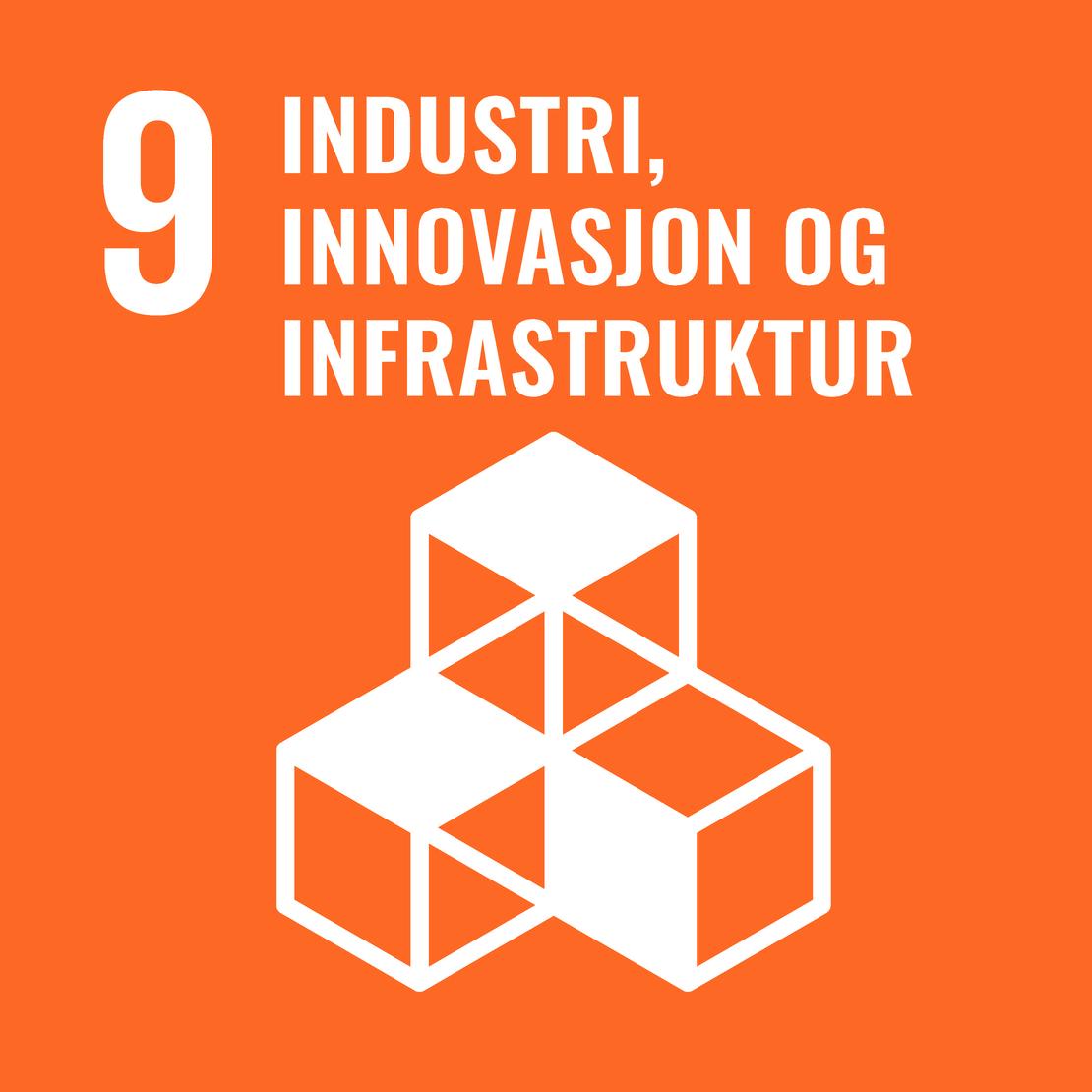 FNs bærekraftsmål 9