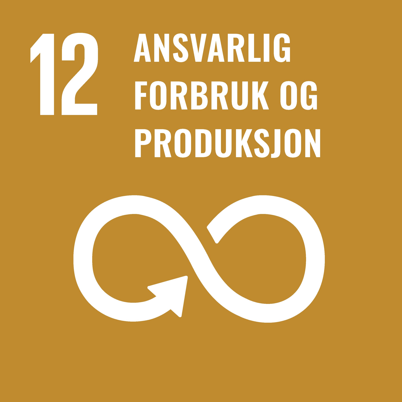 FNs bærekraftsmål 12