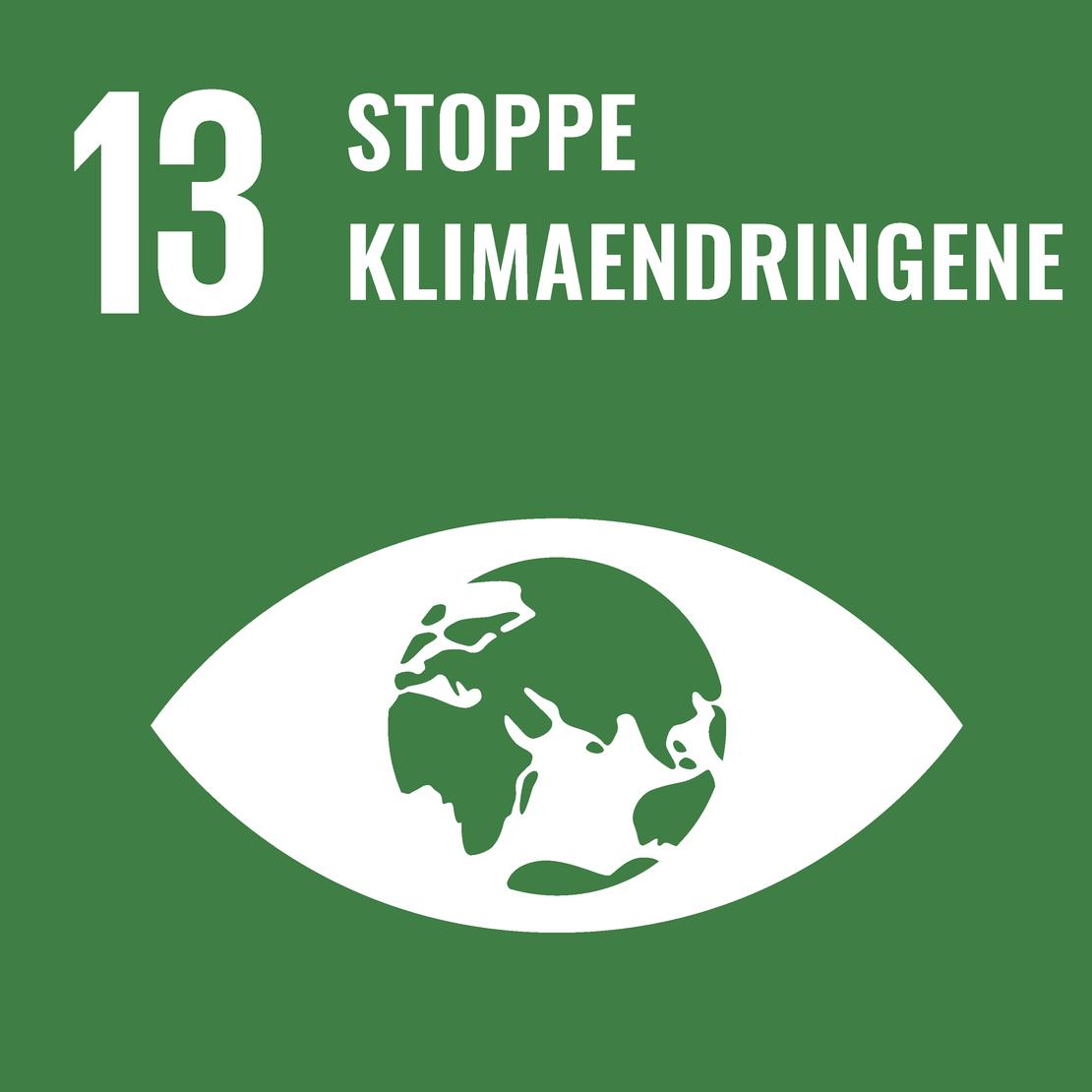 FNs bærekraftsmål 13